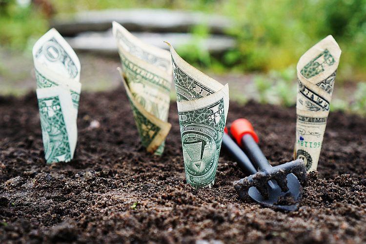 Obligacje korporacyjne - czy warto?